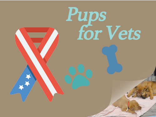 Pups for Vets